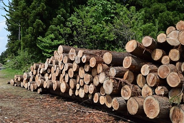 木材不足と高騰の原因は?日本の木を使って解決することはできないの?